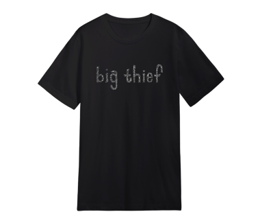 BIG THIEF Leafy Text T-Shirt