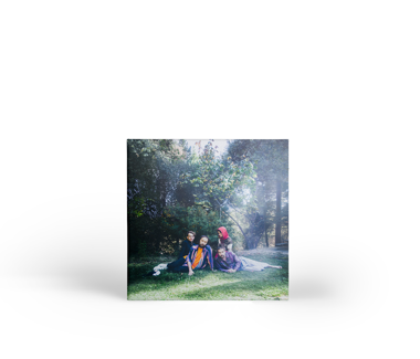 BIG THIEF U.F.O.F. CD